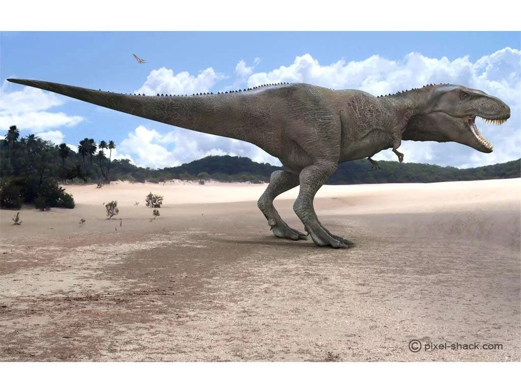 Futura Science, https://www.futura-sciences.com/planete/photos/paleontologie-top-10-dinosaures-vous-ne-voudriez-jamais-croiser-677/paleontologie-giganotosaure-giganotosaurus-plus-grands-carnivores-terrestres-4480/
