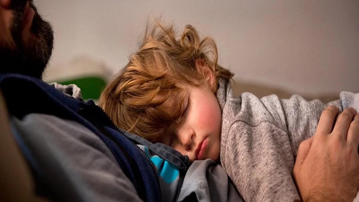filhotes dormem muito