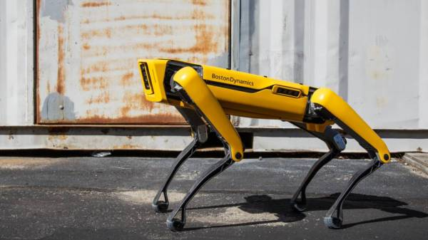Cão Robô Spot