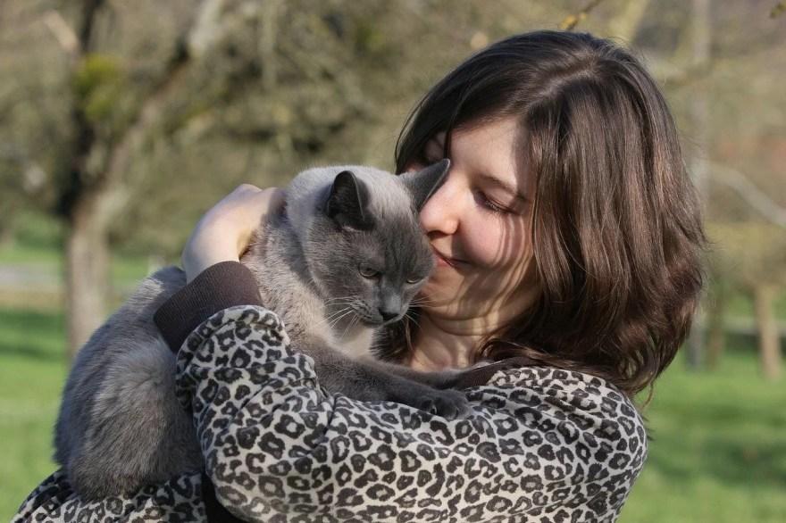 gato e seu dono