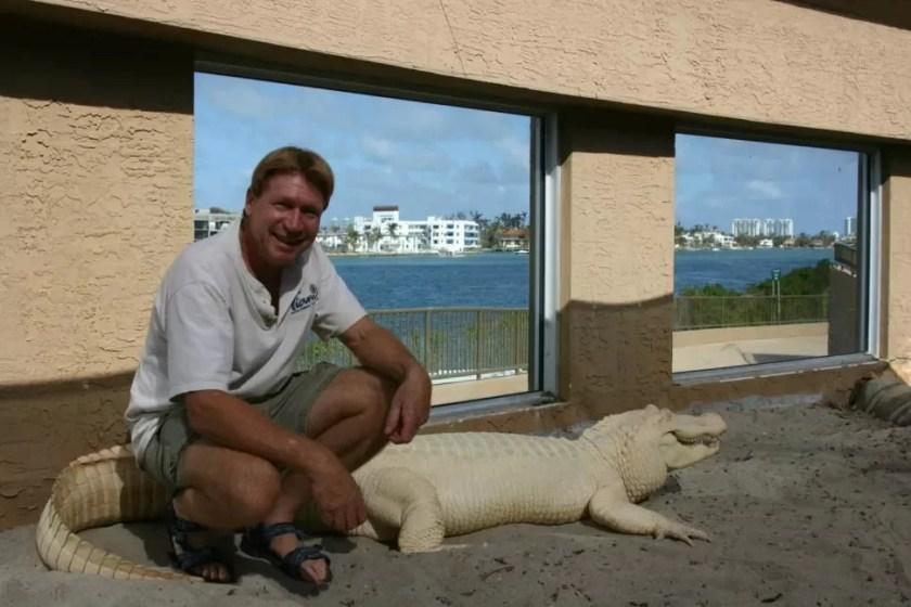 Researcher next to an albino adult crocodile