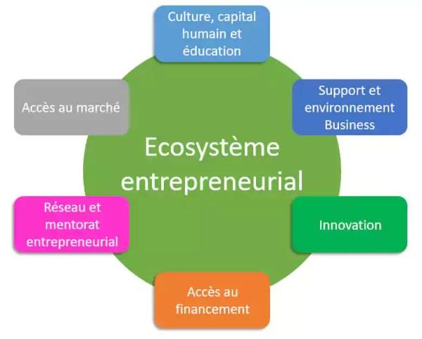 entrepreneur Irlande société