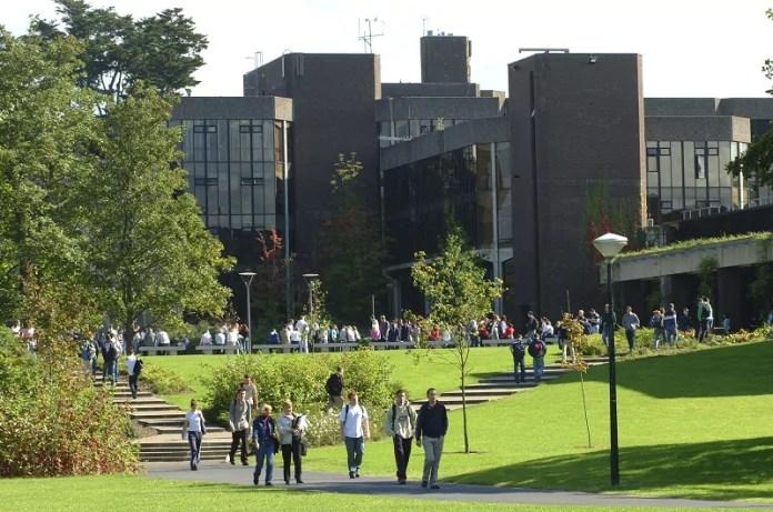 Limerick université Irlande