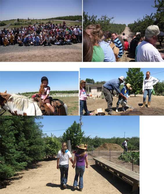 day-on-the-farm2012 (1)