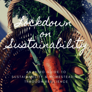 sustainability eco friendly zero waste book download society zero glasgow