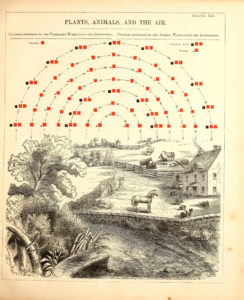 EL Youmanss Chemical Atlas Or The Chemistry of Familiar Objects 1854  SOCKS