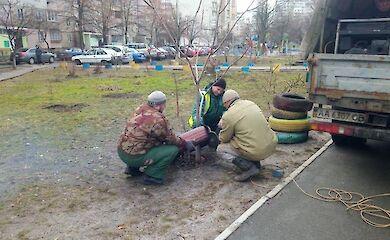 В Дарницком районе с клумб начали убирать старые покрышки