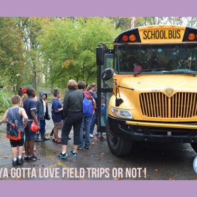 Ya Gotta Love Field Trips, or Not!