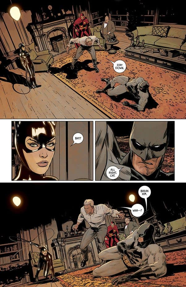 Batman, Catwoman, Tom King, Stay Down, Break Him, Comic Book, Panels