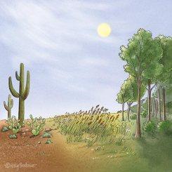 Landscape Transitions (pencil, digital)