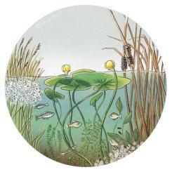 Pond Underwater (pencil, digital)