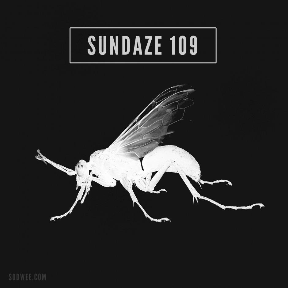Sundaze #104