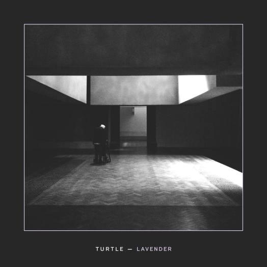 Turtle - Lavender - sodwee.com