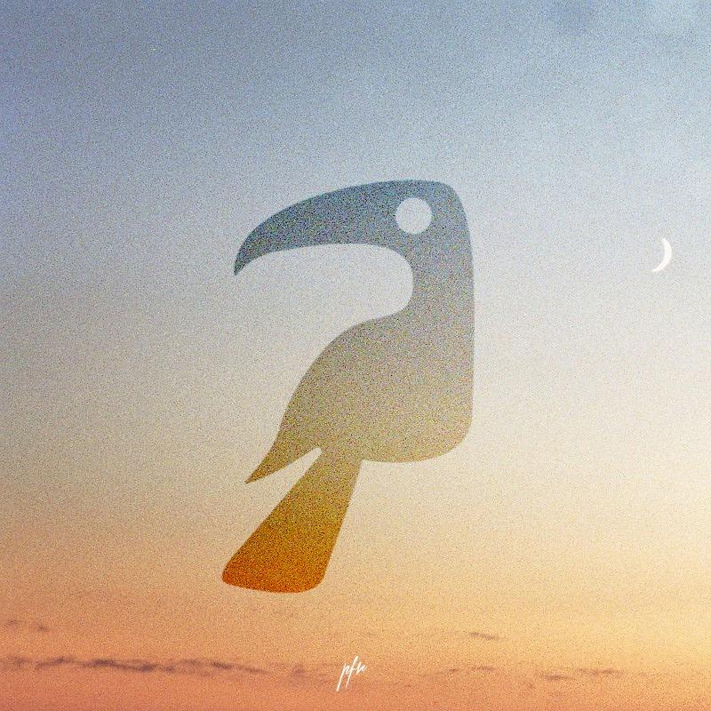 Bleu Toucan - Sodwee.com