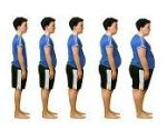 Definition of body mass - What it is, Meaning and Concept