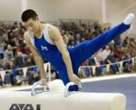 Definition of Artistic Gymnastics - What is, Meaning and Concept