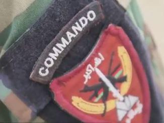 Commando Patch ANA