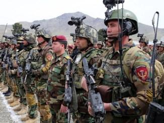 ASSF - Afghan Commando Formation