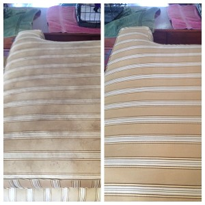 Upholstery Cleaning Aventura Fl 7869420525