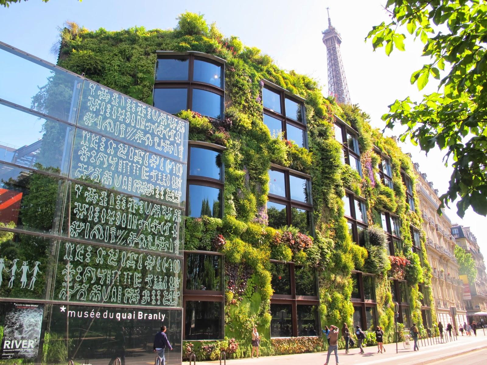 Plantes Pour Mur Végétal Extérieur plantes vivaces pour mur vegetal exterieur | garde corps en