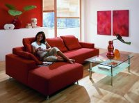 decorating-ideas-living-room-red-leather-sofa  Couch ...