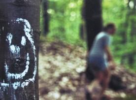 Im Wald © by A. Glumm