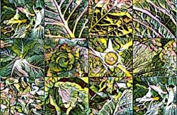 Kohl-Collage verfremdet