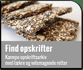Lowcarb.dk opskrifter