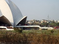 Cute to the lotus temple