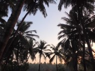 Sunrise at Yogamea