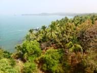 views from cabo da rama