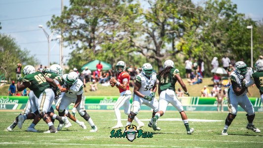 111 - USF Spring Game 2018 - USF QB Chris Oladokun surveying the field by Dennis Akers - SoFloBulls.com (5397x3036)