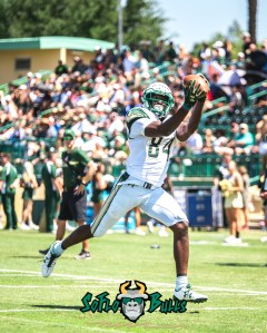 112 - USF Spring Game 2018 - USF WR Randall St. Felix by Dennis Akers - SoFloBulls.com (2718x3397)