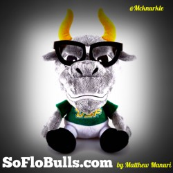 SoFloBulls.com | by Matthew Manuri |