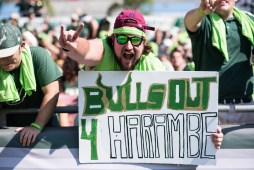 FSU vs USF 2016 17 - Student Section Sign 'Bulls Out 4 Harambe' by Dennis Akers (6016x4016)