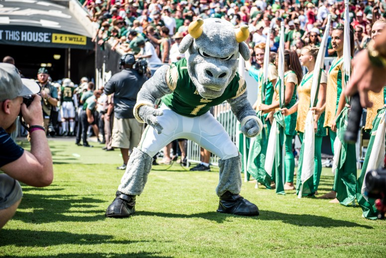 FSU vs USF 2016 49 - Rocky the Bull lined by Flag Girls Pre-game by Dennis Akers (5942x3967)