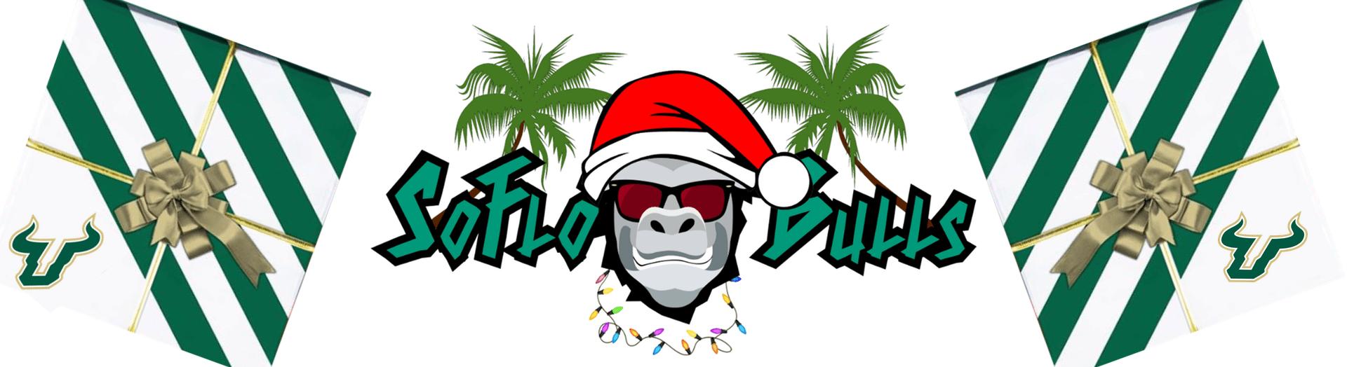 Merry Christmas from the boys at SoFloBulls.com 2016 Header Image ...