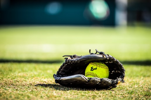 2017 USF Bulls Bulls Softball Glove on field by Dennis Akers | SoFloBulls.com