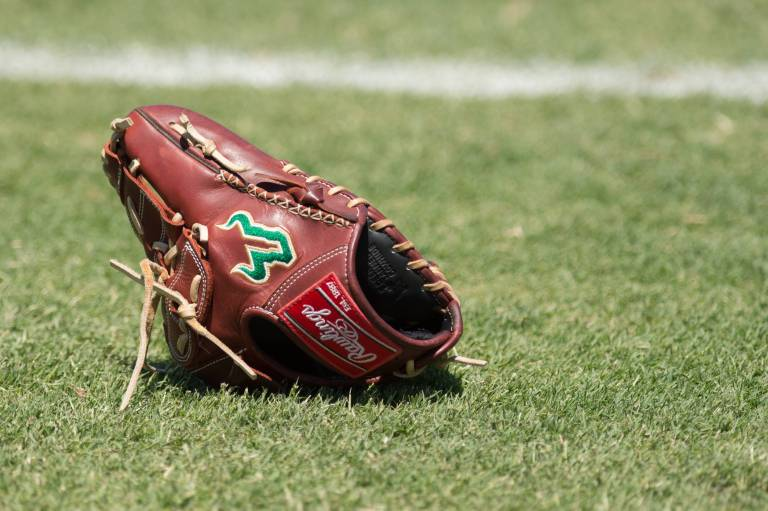 2017 USF Baseball Glove on Field Background Image HD (3876x2580) | SoFloBulls.com