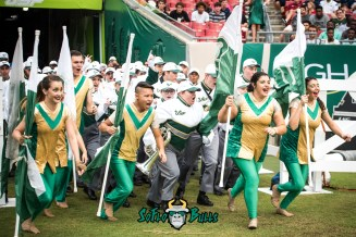 19 - Illinois vs. USF 2017 - USF White Hot Band by Dennis Akers | SoFloBulls.com (5519x3684)