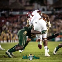 86 - Temple vs. USF 2017 - USF DB Ronnie Hoggins by Dennis Akers | SoFloBulls.com (3689x3689)