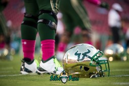 31 - Cincinnati vs. USF 2017 - USF Gold Helmet on Field by Dennis Akers | SoFloBulls.com (5742x3833)