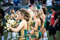 42 - USF vs. Houston 2017 - USF Cheerleaders by Dennis Akers | SoFloBulls.com (6016x4016)