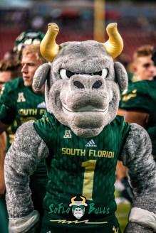 149 - Elon vs. USF 2018 - USF Mascot Rocky the Bull by Dennis Akers | SoFloBulls.com (3631x5439)