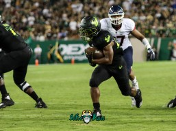 115 - USF vs. UConn 2018 - USF RB Johnny Ford by Will Turner | SoFloBulls.com (4026x3019) - 0H8A8785