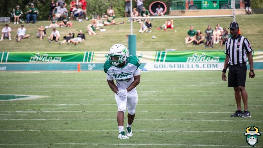 109 - USF RB Johnny Ford Spring Game 2019 by David Gold 1129 (6000x3375)