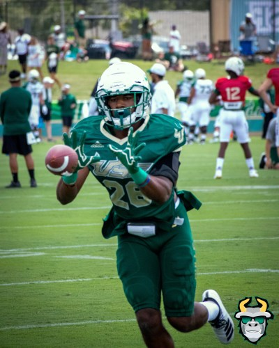 6 - USF DB Keyon Helton Spring Game 2019 by David Gold 0269 (4000x5000)
