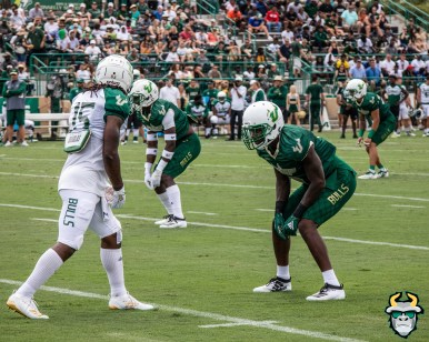 62 - USF WR Jernard Phillips Mike Hampton Spring Game 2019 by David Gold 0933 (5000x4000)