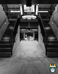 16 - Yuengling Center Entrance B&W Fan Fest 2019 by David Gold DRG02832