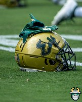 2 - USF vs Georgia Tech 2019 - USF Helmet on field at Bobby Dodd Stadium by David Gold - DRG08576